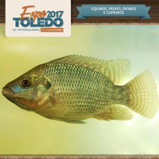 Expo Toledo 2017